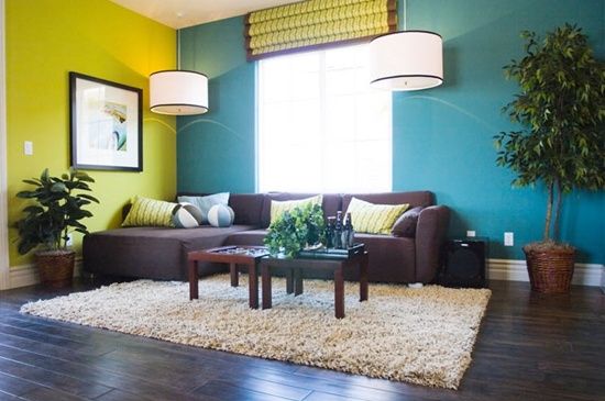 living room paint color (14)