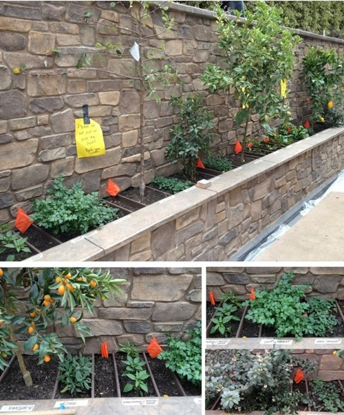 vegetable garden border ideas photograph 25 garden bed bor