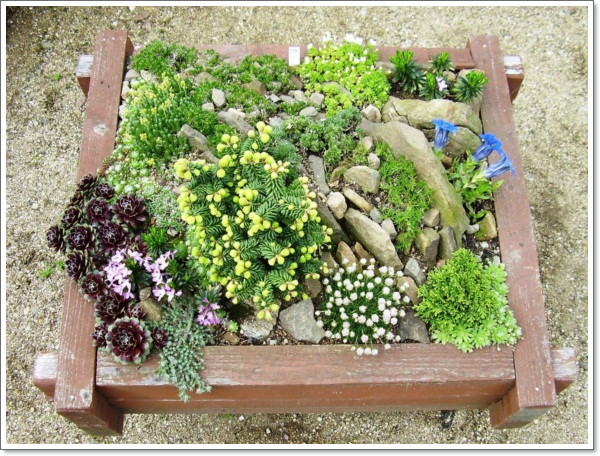 Inspirations-Design-Home-Landscaping-In-Small-Twon-Ideas-Gardener-Rock-Garden-Ideas-Uncategorized-Images-Gardening-Ideas
