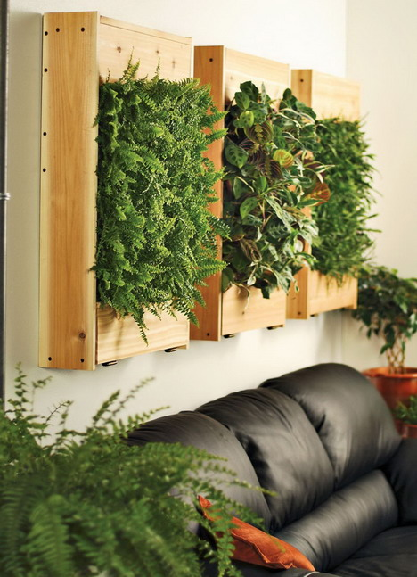 Spice up your space 20 living room wall decor ideas for Living room with indoor plants